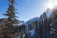 Sunny Days en Rocky Mountain National Park fotos de archivo