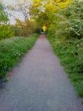 Sunny Days Stroll Again. For , , , , love, sunshine, green, lush, summer, spring, colour, fields, walks stock image