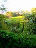 Sunny Days Stroll Again. For , , , , love, sunshine, green, lush, summer, spring, colour, fields, walks stock images
