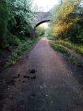 Sunny Days Stroll Again. For , , , , love, sunshine, green, lush, summer, spring, colour stock photos