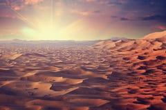 Sunny desert Stock Photography
