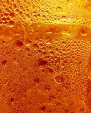 Sunny drink Royalty Free Stock Image