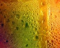 sunny drinka Zdjęcie Stock
