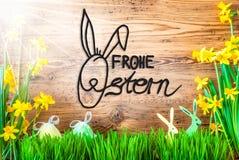 Sunny Easter Decoration, calligrafia Frohe Ostern significa Pasqua felice fotografia stock