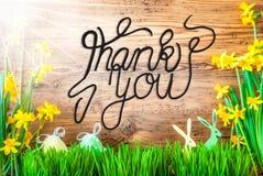 Sunny Easter Decoration, calligrafia inglese vi ringrazia fotografia stock libera da diritti