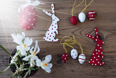 Sunny Easter Decoration, croco, Bunny And Eggs Immagini Stock