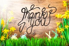 Sunny Easter Decoration engelsk kalligrafi tackar dig royaltyfri foto