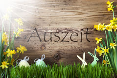 Sunny Easter Decoration, Gras, Auszeit Means Relax Royalty Free Stock Photo