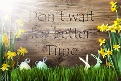 Sunny Easter Decoration Gras, citerar inte väntan bättre Tid royaltyfri bild