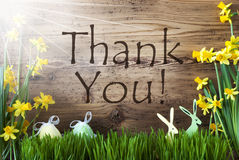 Sunny Easter Decoration Gras, Englisch text tackar dig Royaltyfria Foton