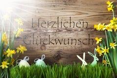Sunny Easter Decoration Gras, Herzlichen Glueckwunsch betyder lyckönskan arkivbilder