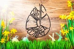 Sunny Easter Decoration kalligrafi Frohe Ostern betyder lycklig påsk royaltyfria bilder