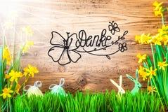 Sunny Easter Decoration kalligrafiDanke hjälpmedel tackar dig royaltyfri fotografi