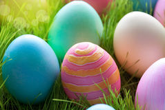 Sunny Easter Eggs Which Are Colorful and Many On Green Grass stock photos
