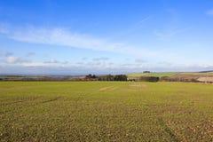 Sunny english farming landscape Stock Photo