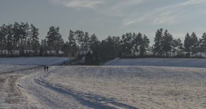 Sunny evening in village Spisske Tomasovce. In Slovakia winter royalty free stock image