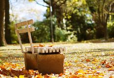 Sunny fall day in the park. Bench with leaves on it and around it Royalty Free Stock Photos