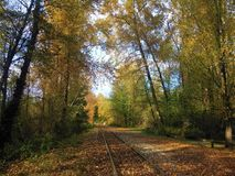 Beautiful and colorful autumn. Railtrack with fallen leafes Royalty Free Stock Photography