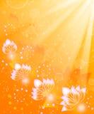 Sunny fantasy Stock Image