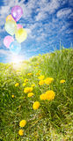 Sunny field with balloons Stock Photography