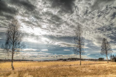 Sunny field. In Karlstad Sweden Stock Photography