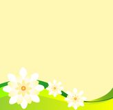 Sunny floral background. With place for your text Royalty Free Stock Photos