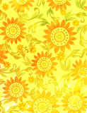Sunny floral handdrawn backdrop Royalty Free Stock Photography