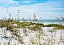 Free Sunny Florida Sand Dunes, Sea Oats And Gulf Seascape Royalty Free Stock Images - 154130549