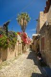 Sunny Flower Old Road in Rhodes Greece stockfoto