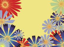 Sunny flowers. Beautiful petal and flowers on background illustration Stock Photography