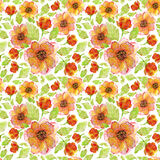 Sunny flowers anemones. Seamless watercolor pattern with orange flowers anemones Royalty Free Stock Photos