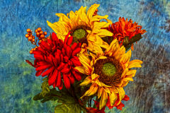 Sunny flowers. Assorted flowers on a textured back ground Stock Image