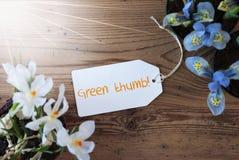 Sunny Flowers, etichetta, manda un sms al pollice verde fotografia stock libera da diritti