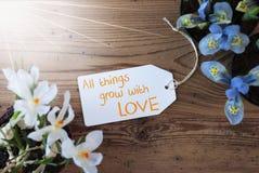 Sunny Flowers etikett, citerar all saker växer med förälskelse Royaltyfria Bilder