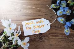 Sunny Flowers, Label, Quote Dont Wait For Better Time Royalty Free Stock Photos