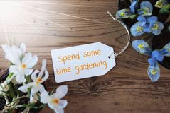 Sunny Flowers, Label, Text Spend Some Time Gardening. Sunny Label With English Text Spend Some Time Gardening. Spring Flowers Like Grape Hyacinth And Crocus Stock Photography