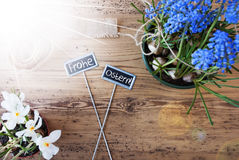 Sunny Flowers, Signs, Frohe Ostern Means Happy Easter Stock Photos