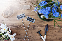 Sunny Flowers, Signs, Text Happy Weekend, Tools Stock Photography