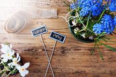 Sunny Flowers tecken, smsar det trädgårds- partiet Royaltyfria Bilder