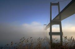 Sunny foggy bridge royalty free stock photo