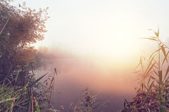 Sunny and foggy landscape Royalty Free Stock Photo