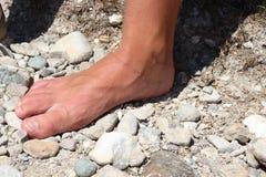 Sunny Foot stock foto
