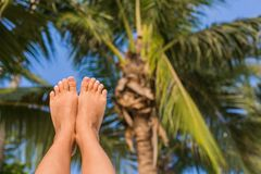 Sunny Foot. Feet up infront of palm and palm leaves Royalty Free Stock Image