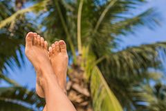 Sunny Foot. Feet up infront of palm and palm leaves Royalty Free Stock Images