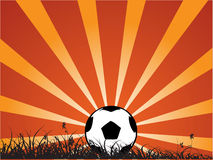 Sunny football/soccer ball Royalty Free Stock Photography