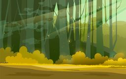 Sunny forest background. Vector illustration of woods in forest in sunlight background. Stock Image