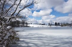 Sunny Frozen Pond i Hudson Valley av New York Royaltyfri Fotografi