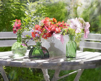 Sunny garden flower arrangement Stock Photo