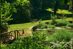 Sunny garden pond with bench stock photo