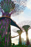 Sunny Gardens by the Bay Stock Photo
